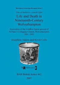 Out of Darkness, Cometh Light': Life and Death in Nineteenth-Century Wolverhampton