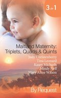 Maitland Maternity: Triplets, Quads and Quints: Triplet Secret Babies / Quadruplets on the Doorstep / Great Expectations / Delivered with a Kiss / And Babies Make Seven (Mills & Boon Spotlight)