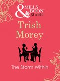Storm Within (Mills & Boon Short Stories)