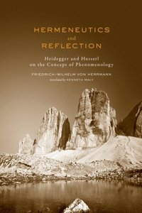 Hermeneutics and Reflection