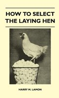 How To Select The Laying Hen