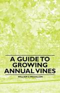 A Guide to Growing Annual Vines
