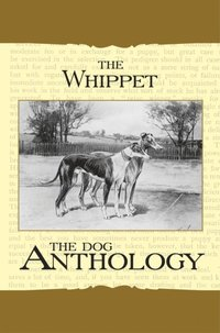 Whippet - A Dog Anthology (A Vintage Dog Books Breed Classic)