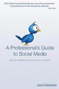 A Professionals Guide to Social Media: The complete step by step guide for an entrepreneur