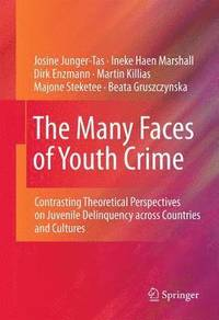The Many Faces of Youth Crime