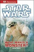 Dk Adventures Star Wars What Makes A M