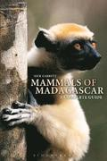 Mammals of Madagascar: A Complete Guide