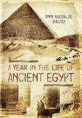 Year in the Life of Ancient Egypt
