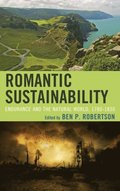 Romantic Sustainability