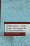 Specifying and Securing a Social Minimum in the Battle Against Poverty