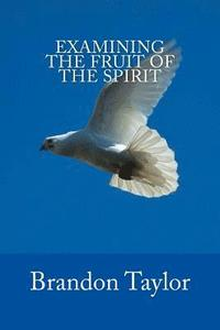 Examining The Fruit Of The Spirit