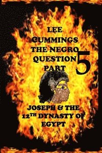 The Negro Question Part 5 Joseph and the 12th Dynasty of Egypt