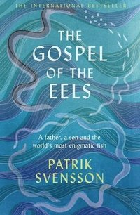 Gospel Of The Eels