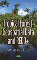 Tropical Forest, Geospatial Data and REDD+
