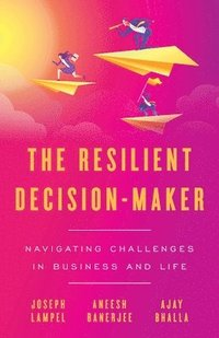The Resilient Decision-Maker