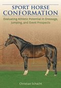 Sport Horse Conformation