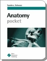 Anatomy Pocket