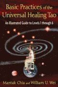 Basic Practices of Universal Healing Tao