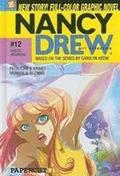 Nancy Drew #12: Dress Reversal