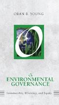 On Environmental Governance