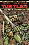 Teenage Mutant Ninja Turtles Volume 1 Change Is Constant Deluxe Edition