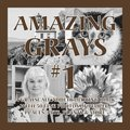 Amazing Grays #1