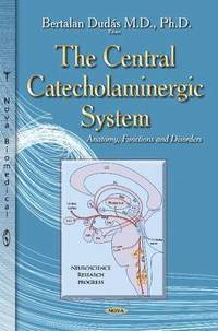 The Central Catecholaminergic System