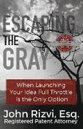 Escaping the Gray: When Launching Your Idea Full Throttle Is the Only Option