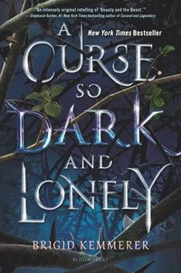 A curse so dark and lonely / Brigid Kemmerer.