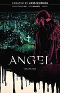 Angel Vol. 1 20th Anniversary Edition