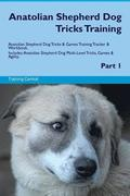 Anatolian Shepherd Dog Tricks Training Anatolian Shepherd Dog Tricks & Games Training Tracker & Workbook. Includes: Anatolian Shepherd Dog Multi-Level