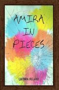 Amira in Pieces