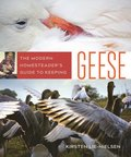 Modern Homesteader's Guide to Keeping Geese