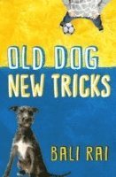 Old Dog, New Tricks