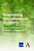 Diagnosing the Indonesian Economy