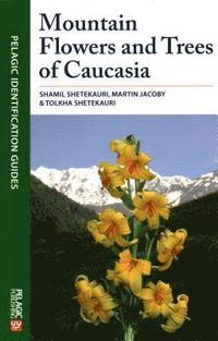 mountain flowers and trees of caucasia shamil shetekauri martin