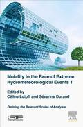 Mobility in the Face of Extreme Hydrometeorological Events 1