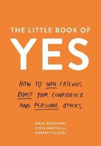 The Little Book of Yes