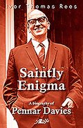 Saintly Enigma - A Biography of Pennar Davies