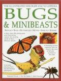 Illustrated Wildlife Encyclopedia: Bugs &; Minibeasts