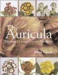 The Auricula History, Cultivation and Varieties