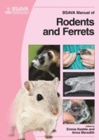 BSAVA Manual of Rodents and Ferrets
