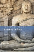 Perspectives on Satipatthana