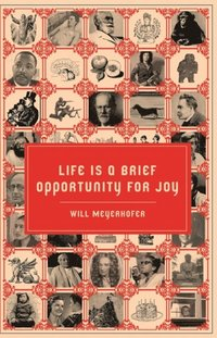 Life is a Brief Opportunity for Joy