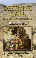 Destiny's Call: Book Four - Numbers: Biblical Fiction