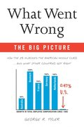 What Went Wrong: The Big Picture