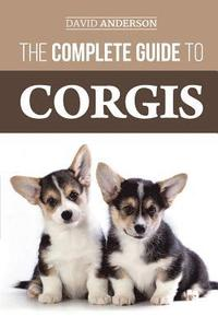 The Complete Guide to Corgis: Everything to know about both the Pembroke Welsh and Cardigan Welsh Corgi dog breeds