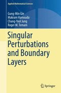 Singular Perturbations and Boundary Layers