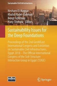 Sustainability Issues for the Deep Foundations