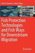 Fish Protection Technologies and Fish Ways for Downstream Migration